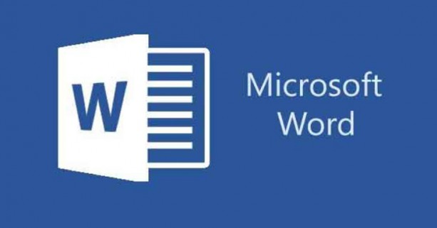 Microsoft Word adopte le